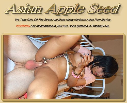 Asian Apple Seed Siterip